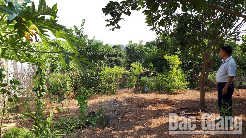 Tranh chấp đất đai ở xã Cao Xá (Tân Yên): Vụ việc sẽ được tòa án giải quyết